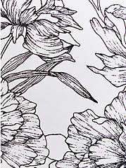 Hipster Panty - Microfiber Floral Black & White , SKETCHBOOK FLORAL WHITE, alternate